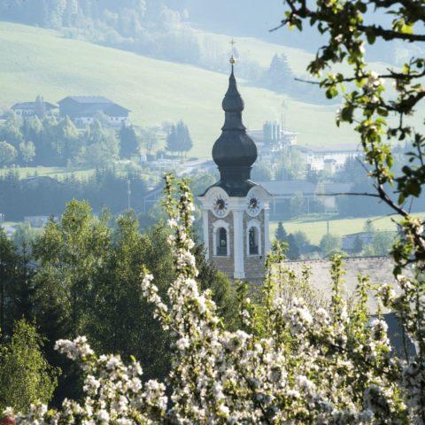 Urlaub in Salzburg Land Altenmarkt Pension Steiner